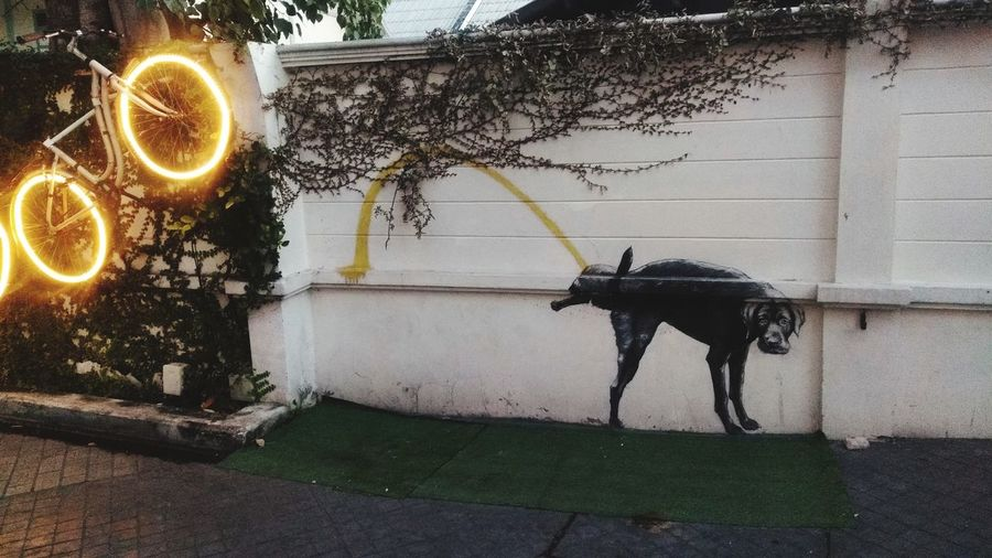 Horse cart on footpath against wall