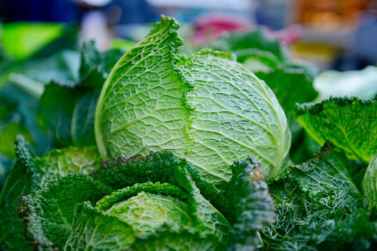 Organic Savoy Cabbage Cabbage Raw Food Market Market Stall Retail  For Sale Green Color Leaf Plant Part Close-up Food And Drink Food Healthy Eating Freshness Plant Wellbeing No People Day Selective Focus Vegetable Outdoors Leaves Focus On Foreground