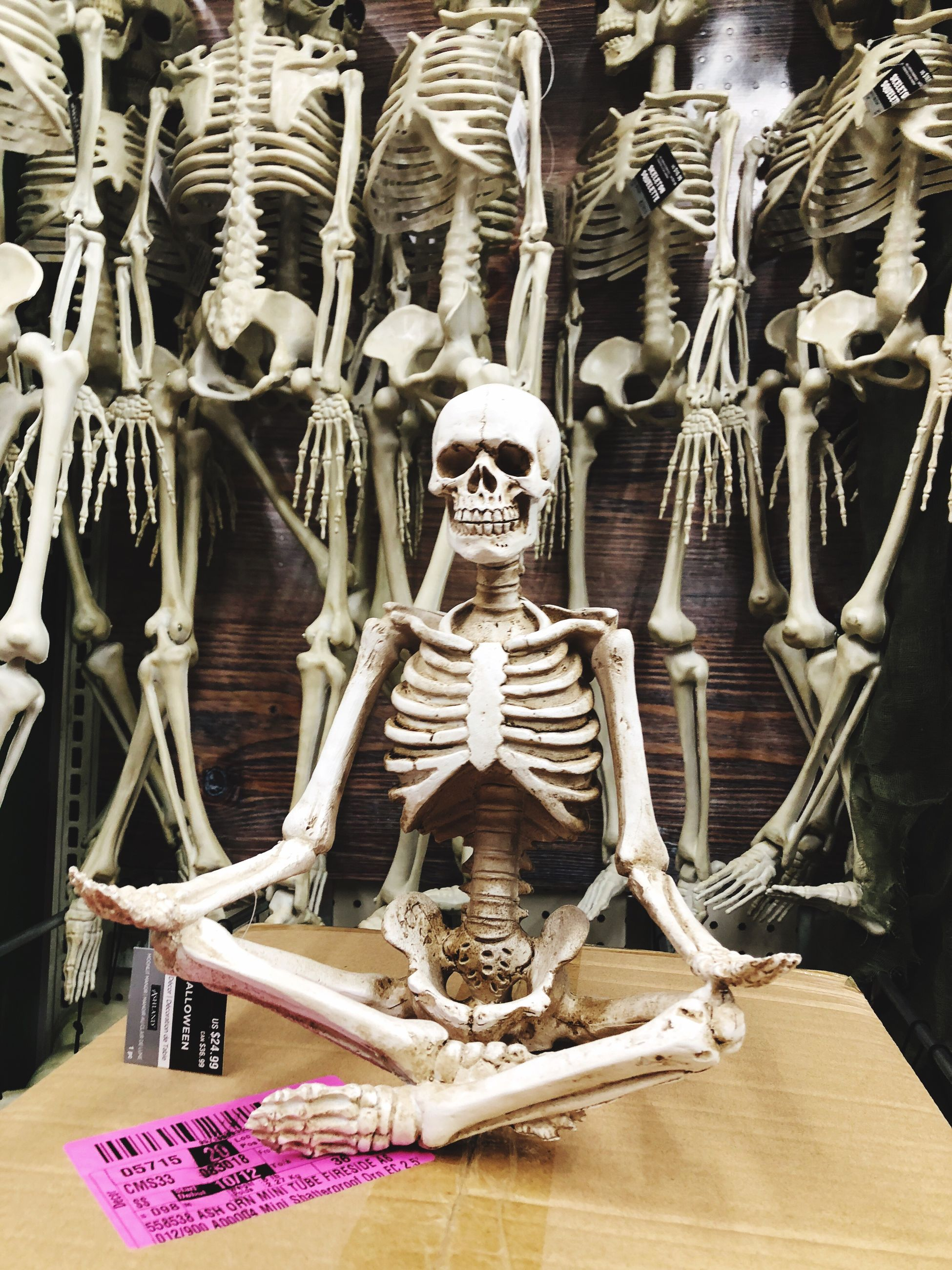 bone, human representation, human skeleton, representation, human bone, skeleton, indoors, human skull, still life, religion, art and craft, large group of objects, spirituality, belief, table, male likeness, creativity