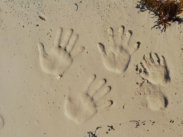 My family leaves their mark Holiday Non-urban Scene No People Cayo Largo Cuba Caribbean Sea Hands Family Love Nofilter Relaxing Freedom FreeTime Beach Backgrounds Sand Full Frame Pattern Paw Print FootPrint Track - Imprint Close-up Handprint Drawn Fingerprint Print Evidence Sandy Beach Engraved Image Drawing