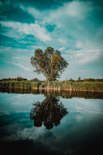Cloud - Sky Reflection Tree No People Sky Water Day Outdoors Nature Beauty In Nature Close-up Pixelated LEICA Q EyeEm Gallery Architecturelovers Architecture_collection EyeEmNewHere EyeEm Best Shots Full Frame Art Is Everywhere Cyberspace