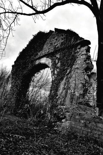 Castle Burg Outdoors Verlassene Orte Lost Place