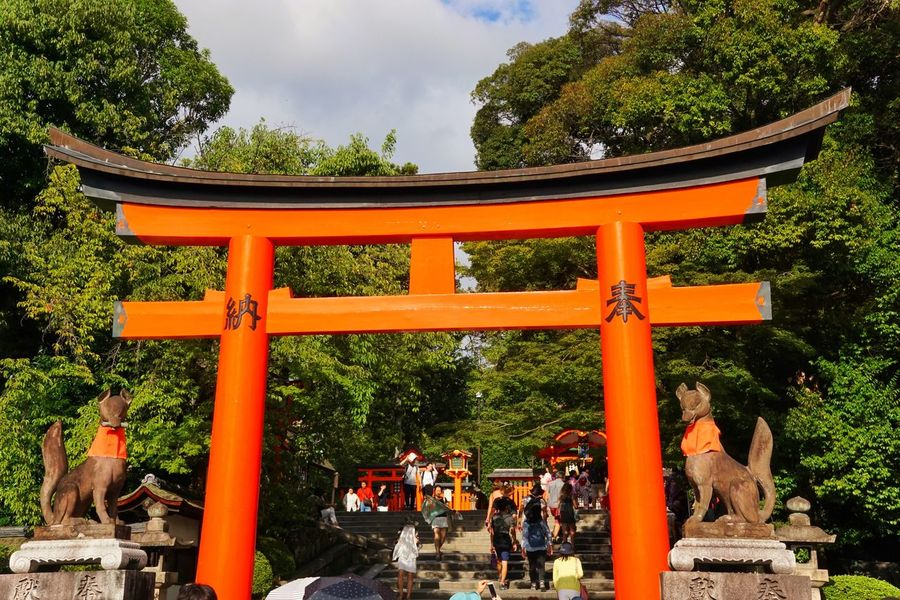 Tori Tori TORII Torii Gate Tree Religion Spirituality Place Of Worship Shrine Real People Architecture Built Structure Travel Destinations Statue Building Exterior