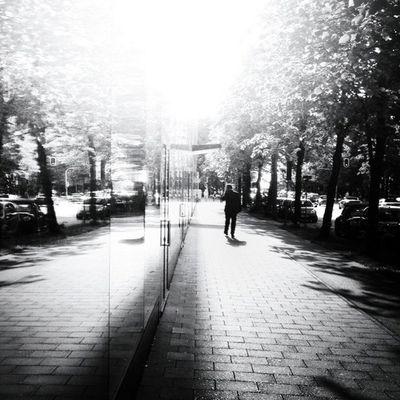 Good Morning Sunshine Bnw_society Bwstyles_gf Street Tweegram Streetphotography Instagood Camera Statigram Blackandwhite Igersgermany IPhone4s Bwoftheday Bw Igtube Iphonesia Igersmunich Instagram Iphonephotography Bnw F_harry Picoftheday Seemycity Iphonography Snapseed Instamood Jj