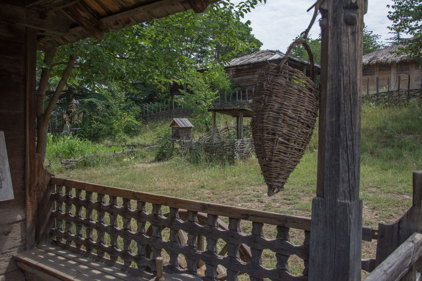 Open-Air Ethnographic museum Georgia The Week On EyeEm Animal Themes Architecture Building Exterior Built Structure Day Ethnographic Hanging Nature No People Outdoors Roof Tree Wood - Material
