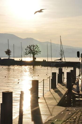 EyeEm Best Shots - Sunsets + Sunrise Sunrise_sunsets_aroundworld Nature_obsession_sunsets EyeEm Best Shots - Nature