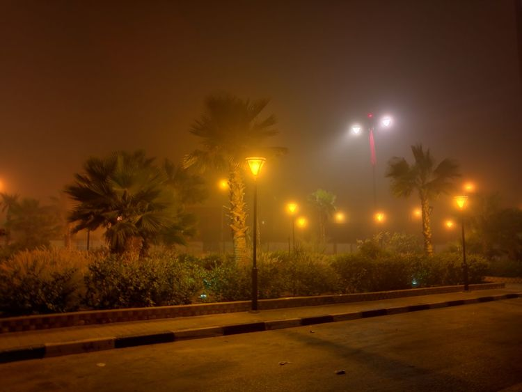 Night Illuminated Outdoors Palm Tree Laayounemorocco Moroccan Sahara Laayoune Brouillard HUAWEI Photo Award: After Dark