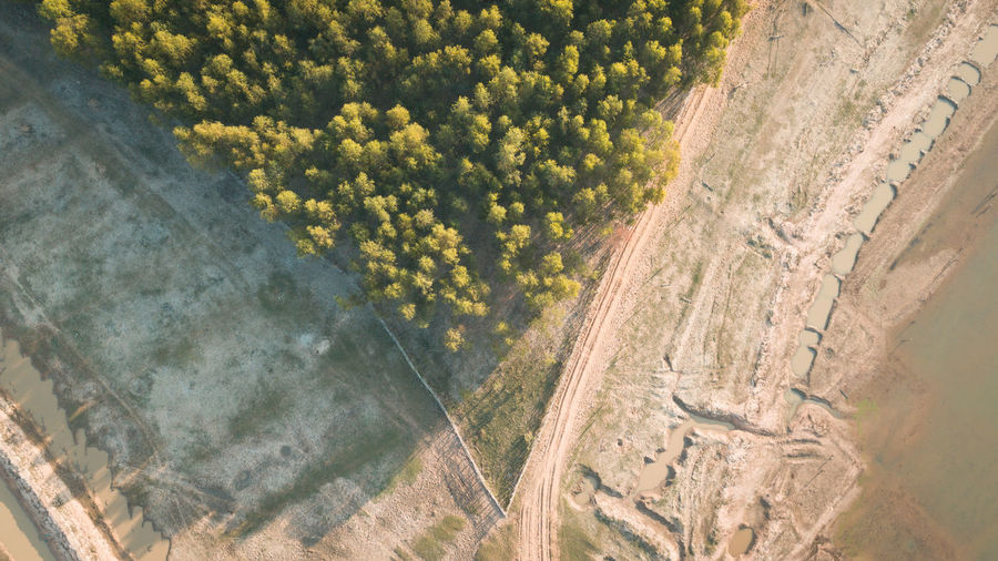 Aerial view from Drone Plant Aerial View Beauty In Nature Nature Landscape Scenics - Nature Environment Day High Angle View Land No People Tree Tranquil Scene Tranquility Outdoors Growth Field Sunlight Travel Agriculture Land Lake View Nature Drone