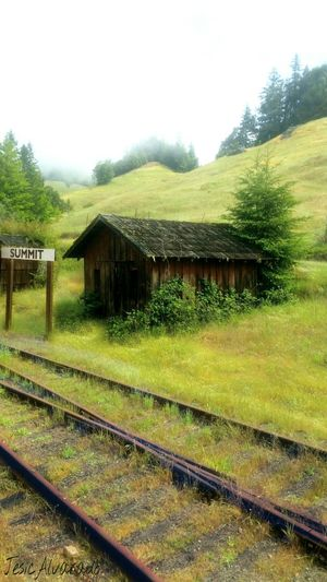 Architecture Building Exterior Built Structure Railroad Track Track Nature Rural Scene Environment Green Color No People Rail Transportation Building Landscape The Great Outdoors - 2018 EyeEm Awards Mendocino County Northern California Beauty