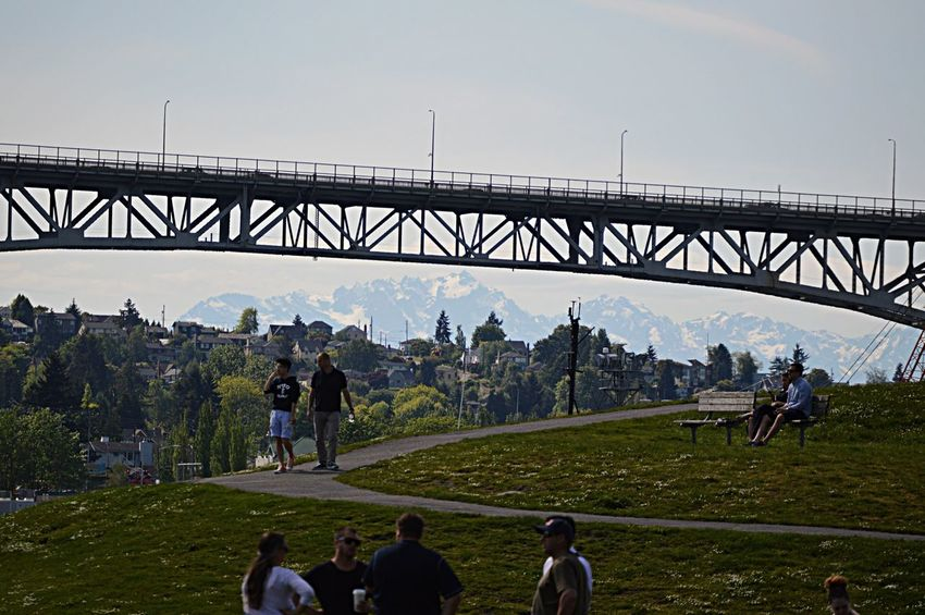 Olympic Mountains Seattle Soaking Up The Sun People Watching