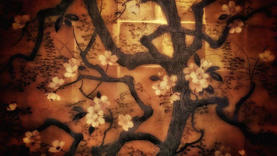 ラーメン屋さんのトイレに飾ってあった絵 日本画 和風 アート Japanese Art Sakura Blossom Tree Blossom Flowers Branches Art ArtWork In The Toilet In The Restroom Textures Textures And Surfaces Light And Shadow Getting Inspired From My Point Of View