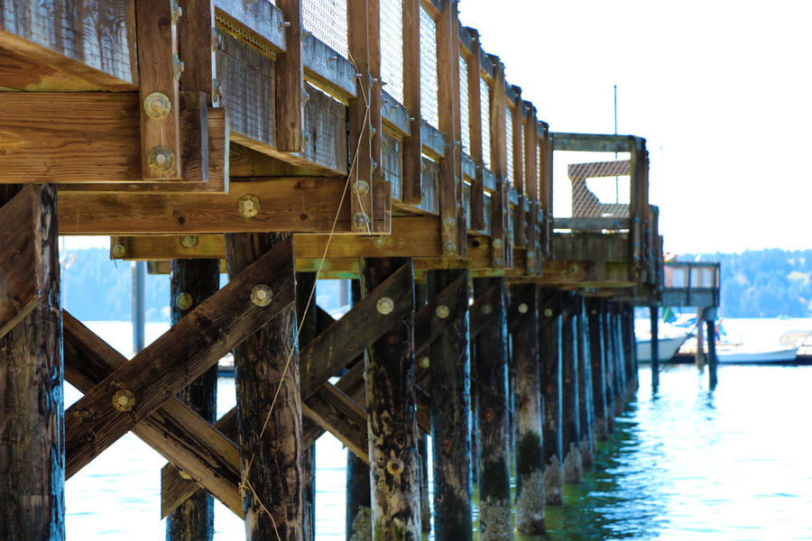 Water Built Structure Ocean Sea Beach Photography Dock Plank Wood - Material