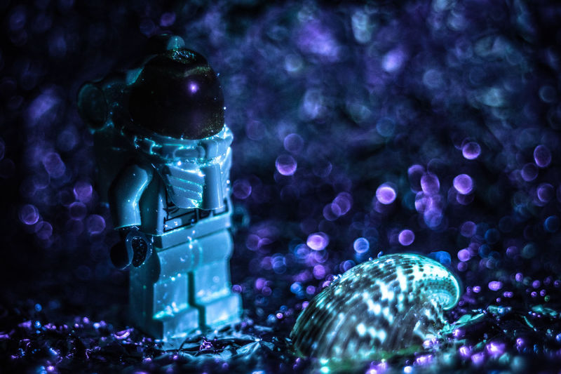 Lego Spaceman & Mutant Alien Seashell [UVIVF]. Since the weather has been lousy this long weekend, I decided to play around with some macro and UVIVF (UV induced visible fluorescence) to make the seashell glow. Add a bit of scrumpled up foil and an old projector lens (Pentacon AV 80mm) and you have a scene from a strange planet. Bokehlicious Check This Out Exceptional Photographs EyeEm Best Shots Hanging Out Hello World LEGO Landscape Relaxing Taking Photos UV  UV Induced Visible Fluorescence UVIVF Bokeh Close-up Enjoying Life Eye4photography  First Eyeem Photo Illuminated Indoors  Light And Shadow Macro No People Seashell Ultraviolet