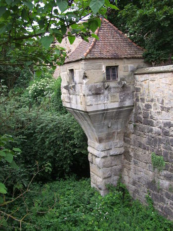 Old Town Wall & Look Out Point Architecture Beauty In Nature Built Structure Composition Flowering Shrub Full Frame Germany Green Color Look Out Point Look Out Tower Lush Foliage Nature No People Outdoor Photography Plants Quiet Places Rothenburg Stone Wall Tourist Attraction  Tourist Destination Tranquility Trees Unusual