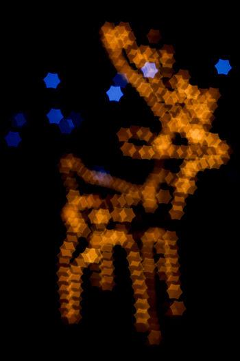 Bokeh Bokeh Light Bokeh Lights Bokeh Love Bokeh Photography Bokeheffect Bokehphotography Christmas Christmas Decoration Christmas Lights Defocused Indoors  No People Nopeople Reindeer Reindeer Sighting Xmas