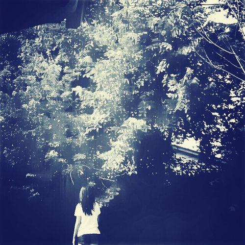 My Photograph Cx