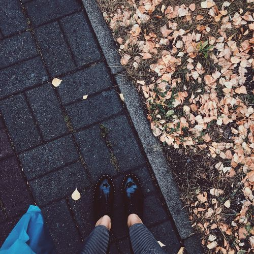 Low Section Of Person Standing On Footpath During Autumn