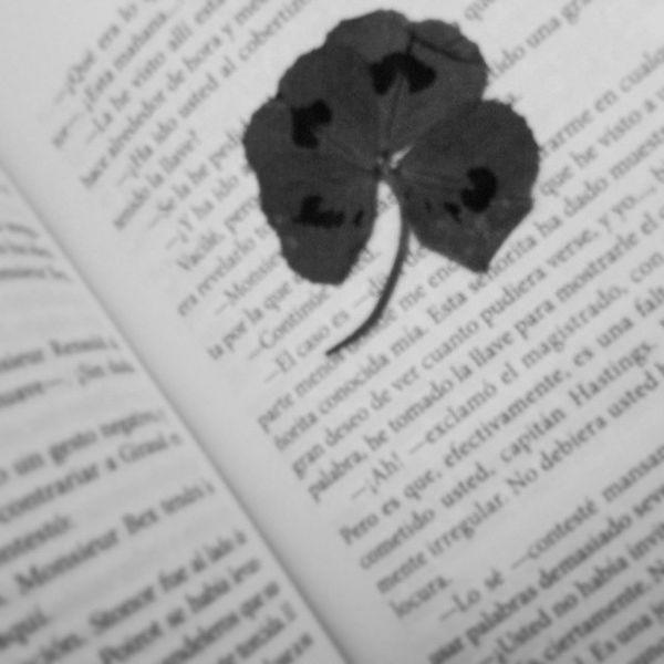 Trebol Luck Books Shumrock blackandwhite