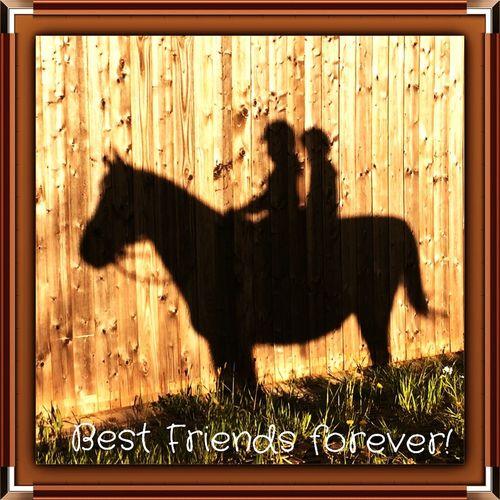 Best Friends forever 🐴👩❤️👩 Enjoying Life Horse Riding Horse Friendship Friends ❤ Best Friends Riding