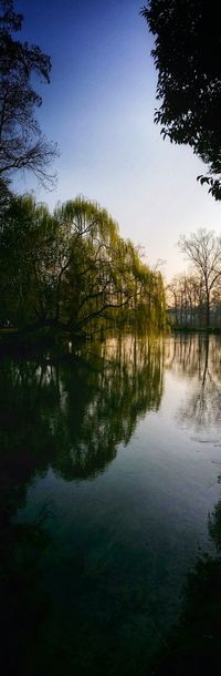Pordenone Italy Travel Photography Travel Traveling Mobile Photography Fine Art Backlight Walking At The Park Nature On The River Bank  Tree Silhouettes Reflections And Shadows Simmetry Mobile Editing