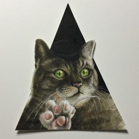 Drawing Cat Cat♡ Sketchbook Colorpencils Liquitex