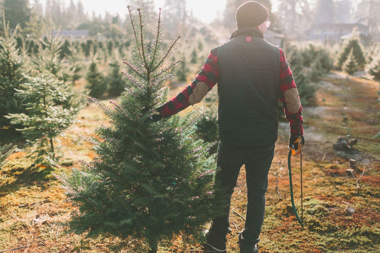 A man standing with a Christmas tree at the tree farm. Holiday Moments Tree christmas tree Christmas Tree Farm One Person Rear View Nature Full Length Men Leisure Activity Outdoors