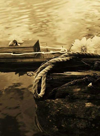 Boat Sea Rope