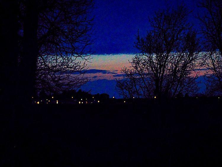 shadows in the dark Eskilstuna-streetphotography Sweden The True Story EyeEmNewHere Astronomy Tree Galaxy Star - Space Constellation Milky Way Silhouette Sky Landscape