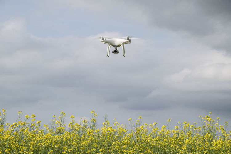 White drone over the field of flowering rape. drone, quadrocopter, copter, phantom, dji, 4, flying, camera, wireless, technology, innovative, smart, illustrative, editorial, sky, background, clouds, blue, overcast, thunderstorm, digital, mounted, robot, aerial, fly, remote, white, surveillance, propeller, field, silhouette, quad, outdoor, intelligence, fourth, drones, outdoors, pro, preparation, development, record, space, rendering, perspective, equipment, octacopter, supply, uav, gadget, watching Drone  Phantom 4 Quadcopter Quadrocopter Dji Phantom Pro