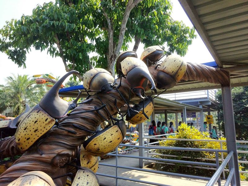 The art of beetle Tree Plant Architecture Day No People Outdoors Building Exterior Metal Animal Themes Group Of Animals