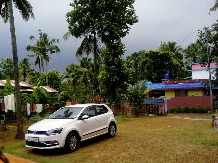 Car Cars Nature Oncoming Rain Evening Coconut Trees Village Lifestyle Village House Village Photography Village