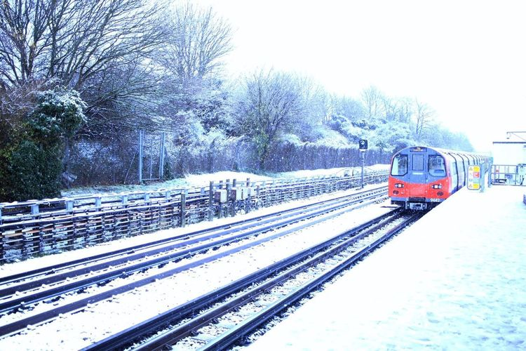 Bestoftheday Transportation Cold Temperature Winter Snow Railroad Track Train - Vehicle Public Transportation Mode Of Transport Weather Sky Tree Snowing Rail Transportation Nature
