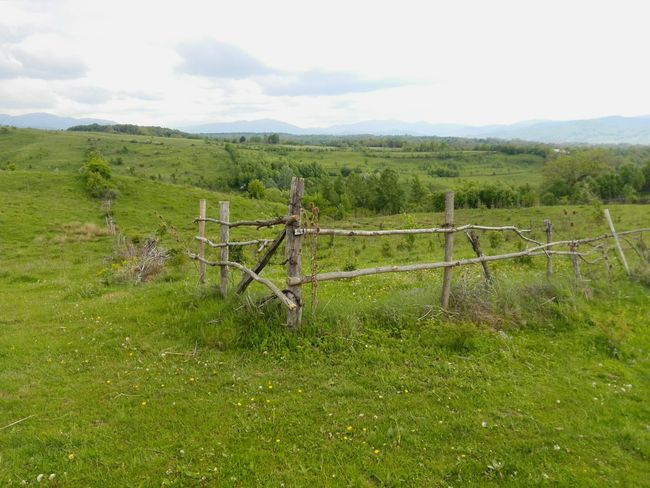 Green Hills Green Grass Old Fence Taking Photos Hanging Out Check This Out Hello World Eye4photography  Nature EyeEm Eyeem Collection EyeEm Gallery Nature_collection EyeEm Nature Lover Eyeem Photography Eyeemphotography Trees And Sky The Great Outdoors - 2016 EyeEm Awards