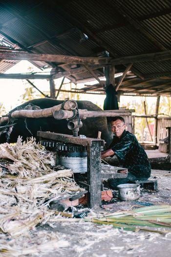 Man Using Old Fashioned Sugar Cane Machine