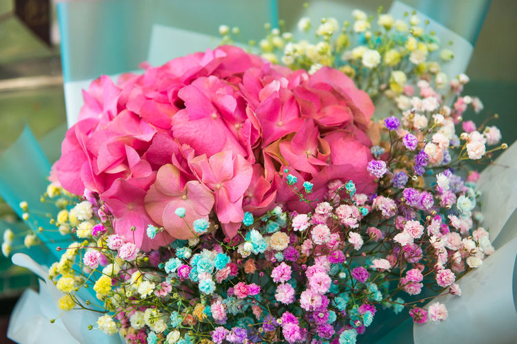 Flowering Plant Flower Freshness Beauty In Nature Plant Pink Color Fragility Vulnerability  Petal Flower Head Close-up No People Inflorescence Flower Arrangement Nature Bouquet Focus On Foreground Day Arrangement Growth Bunch Of Flowers