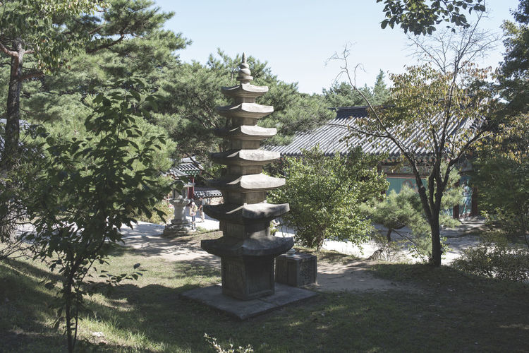 Beauty In Nature Buddhism Day Growth Korea Nature No People Outdoors Sculpture Shadow Sky Sunlight Tree Water