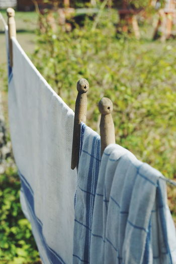 laundry day Laundry Day Laundry Line Old Fashion Retro Wooden Clothespin Clothes Pin Pins Clothespin Bird Perching Close-up Clothesline Clothespin Drying Laundry Cloth