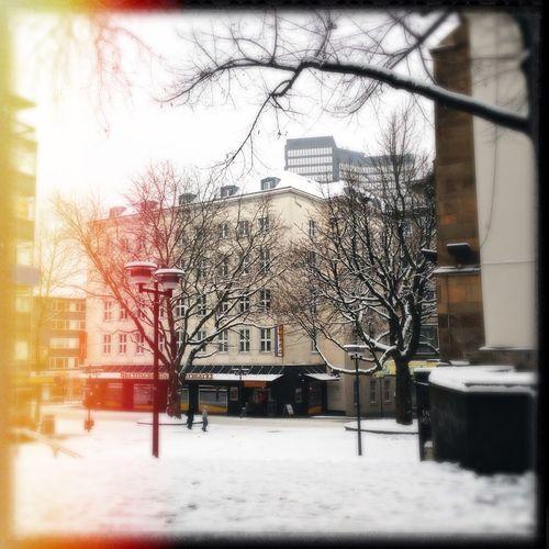 Snow EyeEm Best Shots Street Photography EyeEm Nature Lover