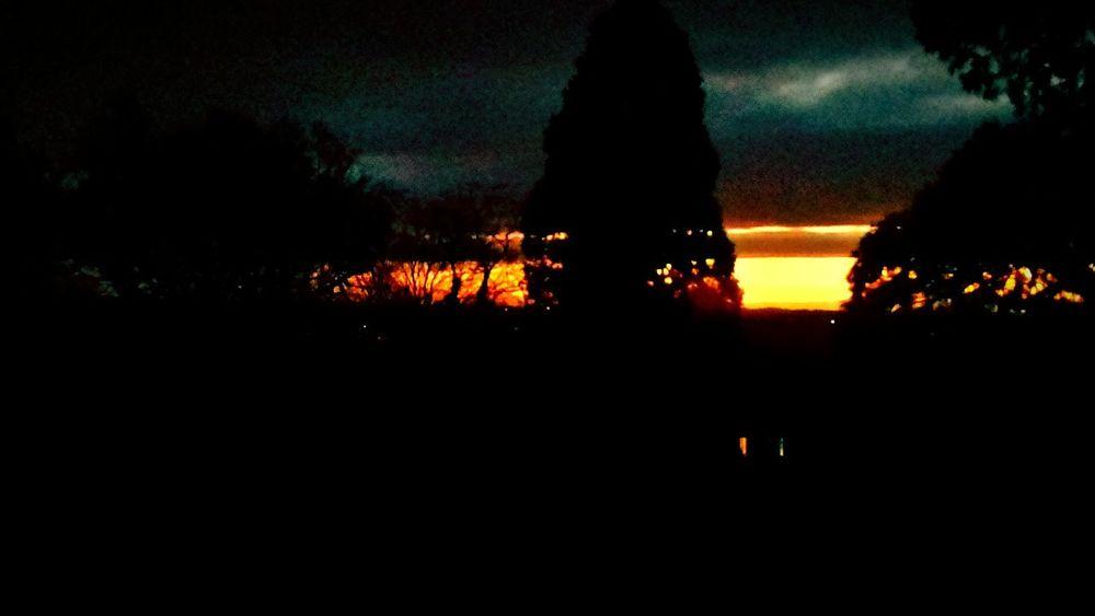 Silhouette Heat - Temperature Night Tree Outdoors Nature Sky Illuminated