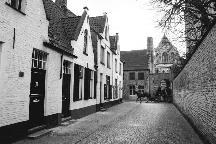 Streets in Bruges Architecture Belgium Black And White Bruges City Horse Carriage Outdoors Street