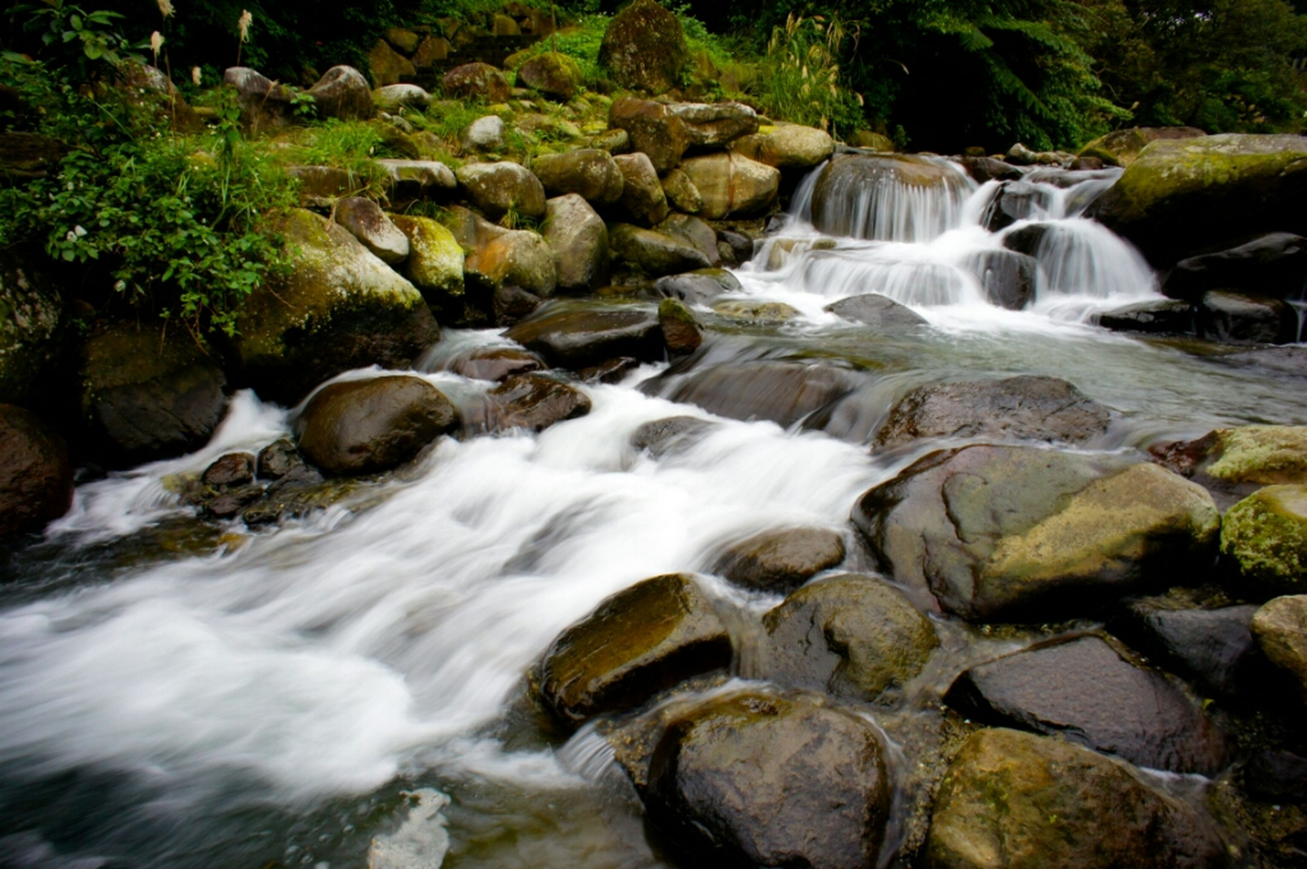 water, flowing water, motion, waterfall, flowing, rock - object, long exposure, forest, stream, beauty in nature, nature, scenics, blurred motion, rock, river, surf, tree, idyllic, day, outdoors