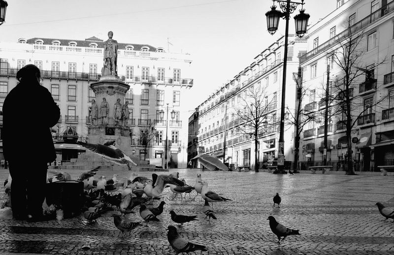 City Real People Architecture Outdoors LisboaPortugal Lisboa Portugal Praça Camões Blackandwhite Photography Streetphoto_bw B&W Collections