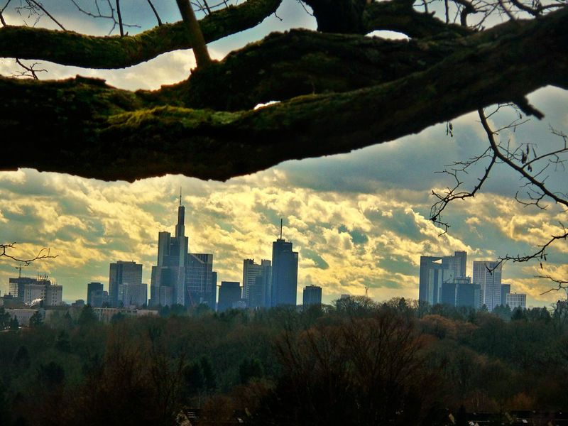 Nature and Modern Architecture Dramatic Sky Frankfurt Skyline Landscape Photography Layering Layering Urban Lifestyle Cityscape Building Exterior Skyscraper Urban Skyline Tree In The Foreground Green Belt Of Frankfurt Growth Trees Outdoors Built Structure Travel Destinations Modern No People View Point View From The Lohrberg Frankfurt Am Main Germany🇩🇪 Cut And Paste