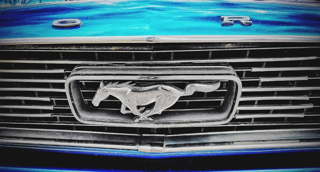 Mustang. Silver horse. Classic car. Badge.