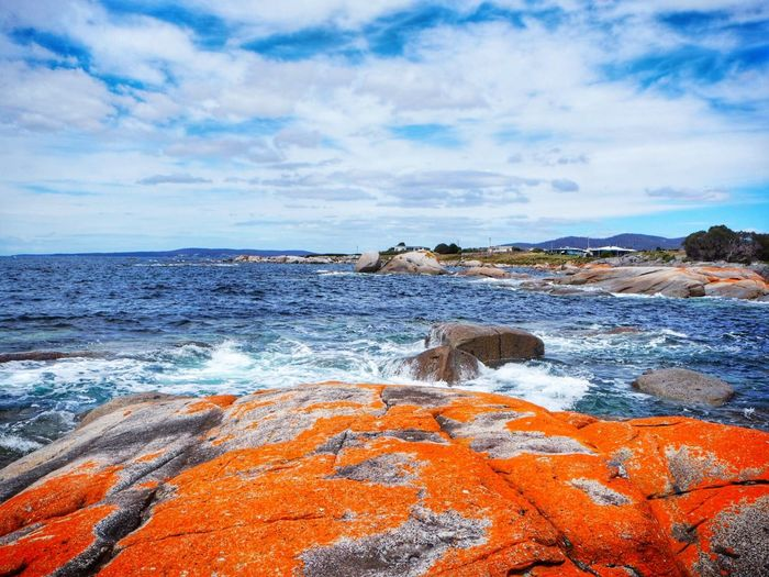 Sea View Seascape Sea And Sky Orange Rocks Sealife Seacreature Orange Rocks Australia Tasmania Bay Of Fires Sky Sea Cloud - Sky Rock - Object Water Nature No People Beauty In Nature Outdoors Scenics Travel Destinations Tranquility Horizon Over Water Beach Wave