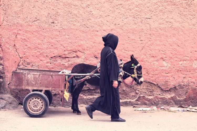 Man with his donkey Street Walk Monk  Lifestyles Man Donkey Streetphotography Adventures In The City The Street Photographer - 2018 EyeEm Awards