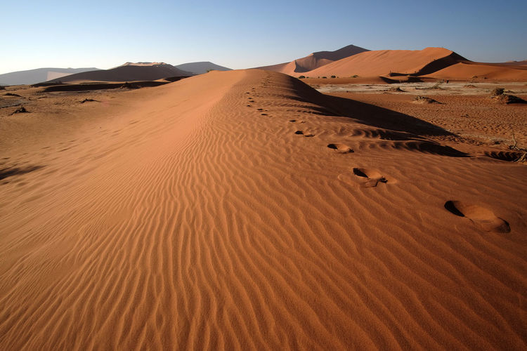 Namib national park, namibia