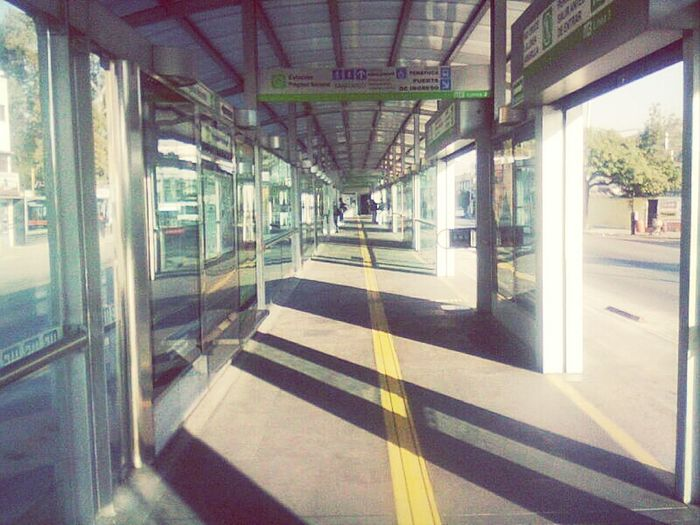 Streetphotography Ciudad De México Metrobus