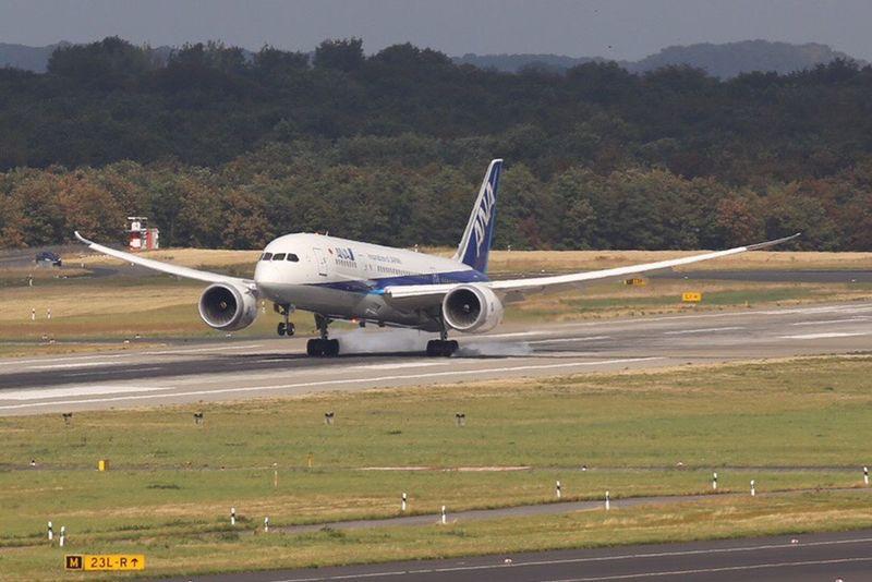 Dreamliner ana Boeing 787-8