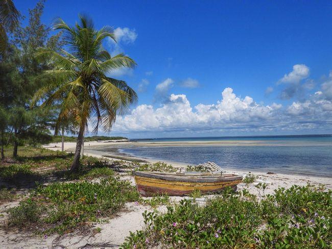 Santa Carolina Island Paradiseisland Vilanculos Inhambane Beach Cristalwater Mozambique Moçambique Africa AfricaTripBook First Eyeem Photo